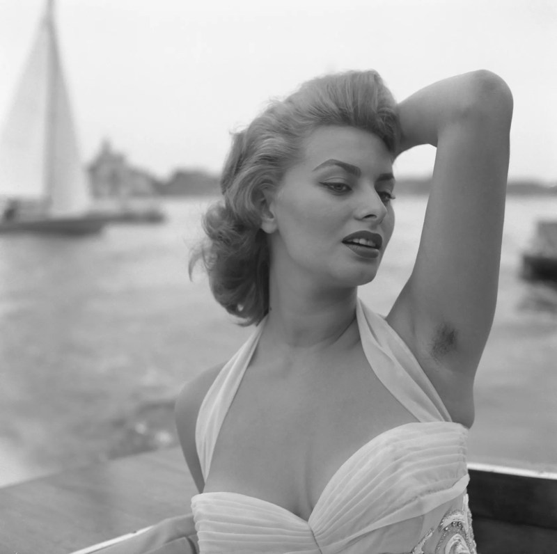 Large Of Sophia Loren Hot