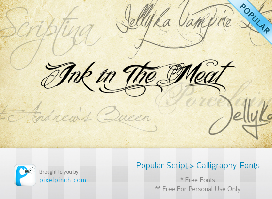 10 Most Popular Script & Calligraphy Fonts