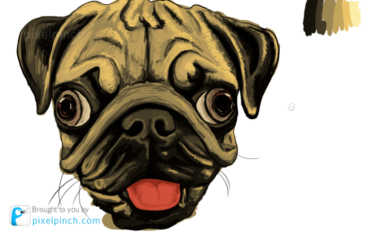 Step 7 Digital Art Dog Pug PixelPinch Digital Coloring Tutorial using Corel Painter & Tablet