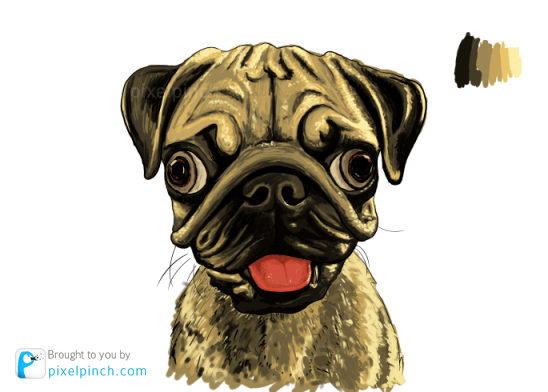 Step 9 Digital Art Dog Pug PixelPinch Digital Coloring Tutorial using Corel Painter & Tablet