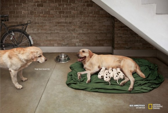2 nat geo wrong father Top Print Advertisements of 2012 Half Yearly, Part 1