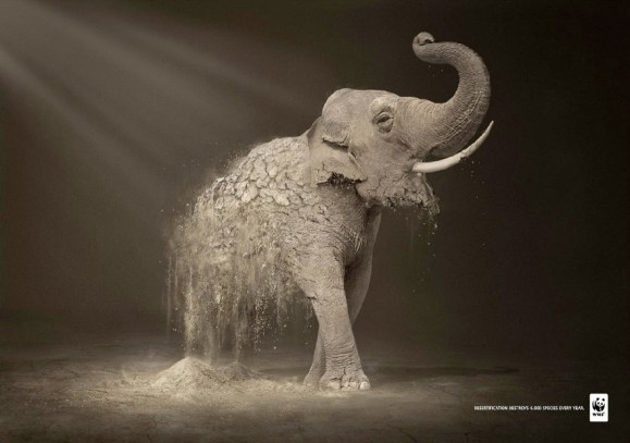 wwf elephant Top Print Advertisements of 2011 Half Yearly, Part 2