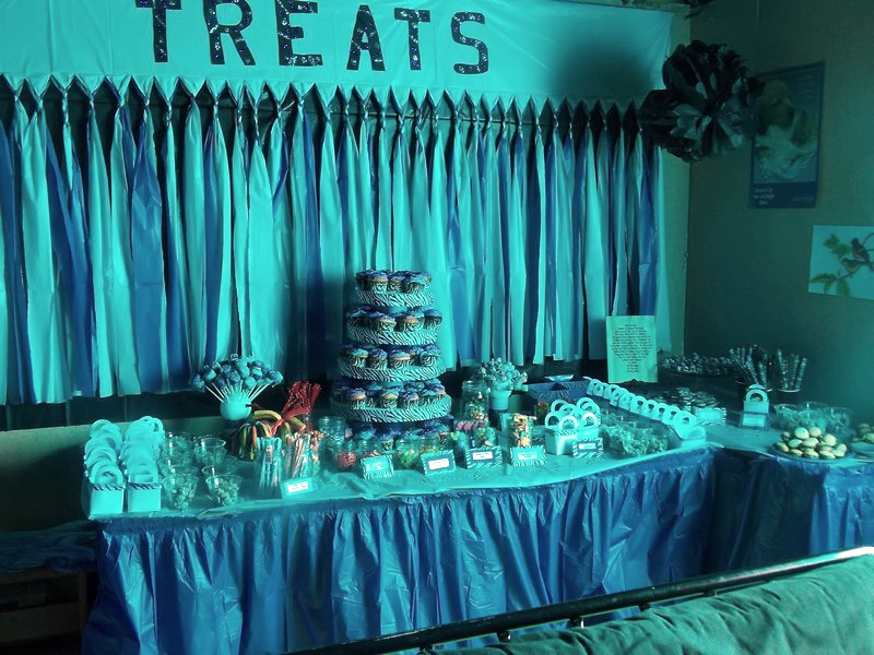 Diy Sweet Sixteen Birthday Party Large Family Style