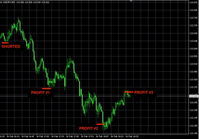 best forex signals feb16