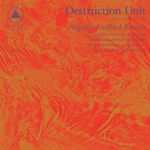 DESTRUCTION UNIT – Negative Feedback Resistor