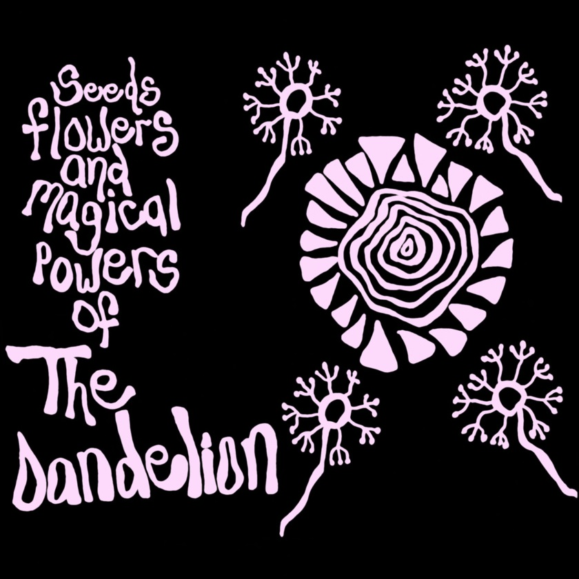 THE DANDELION – Seeds Flowers and Magical Powers of…