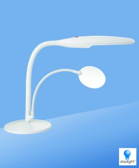 Daylight Lamp - Light