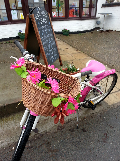 Flowery Bicycle