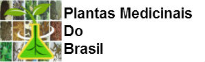Plantas Medicinais Do Brasil