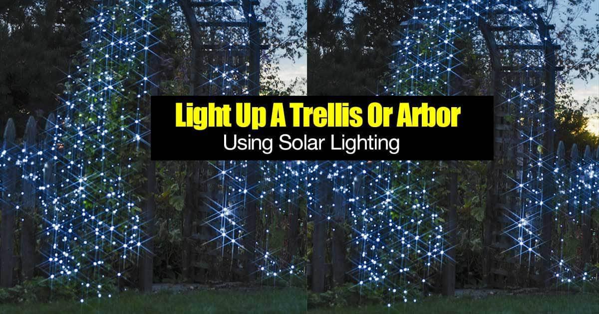 trellis lighting y