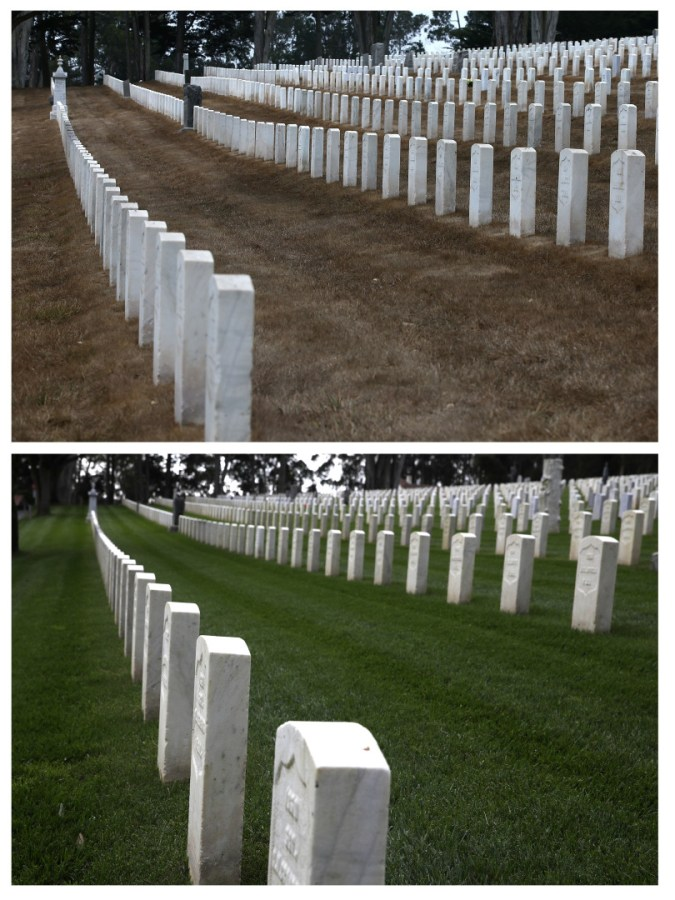 JULY 15, 2014:  (TOP PHOTO) Headstones are surrounded by dead grass at the Presidio National Cemetery on July 15, 2014 in San Francisco. (Photo by Justin Sullivan/Getty Images)  APRIL 10, 2017: (BOTTOM PHOTO) Headstones are surrounded by green grass at the Presidio National Cemetery. (Photo by Justin Sullivan/Getty Images)