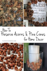 how-to-preserve-pine-cones-acorns-p1