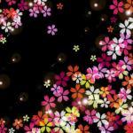 横手公園桜まつり2018日程と出店をチェック!桜の見頃はいつ?