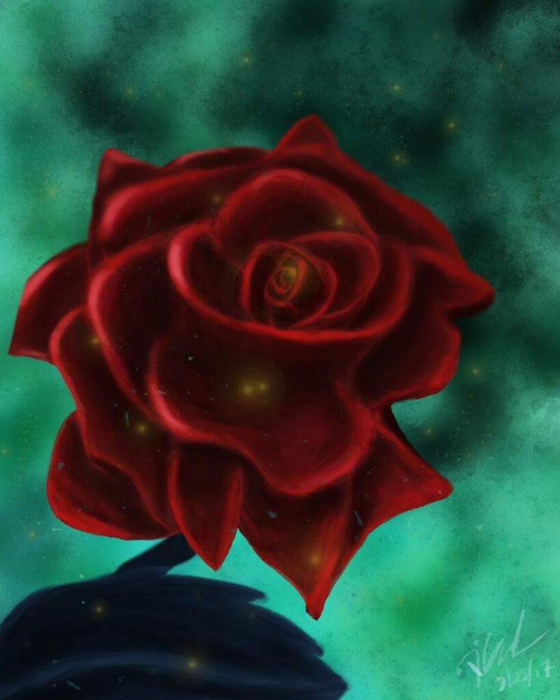 Large Of The Forever Rose
