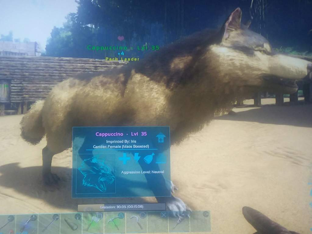 Jolly I Need More Names Ark Survival Evolved Amino Female Wolf Girl Names Grey Wolf Names Female bark post Wolf Names Female