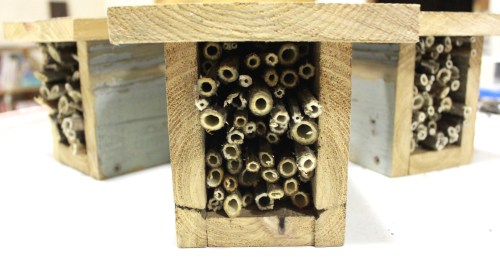 Build A Mason Bee House