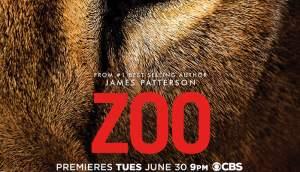 Zoo serie 2015