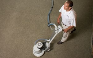 Carpet Cleaning 115