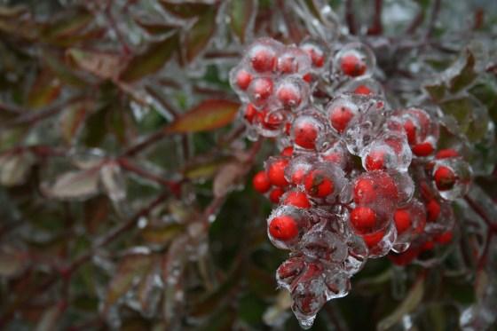 ice-663869_1920