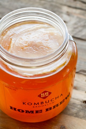 Kombucha Home Brew Kit - UnCommonGoods - Poet in the Pantry