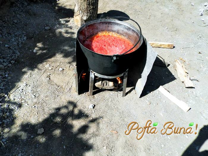bulion-pasta-din-ardei-pofta-buna-gina-bradea (3)