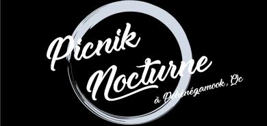 Un premier « Picnik nocturne » à Pohénégamook, mais aussi au Québec!