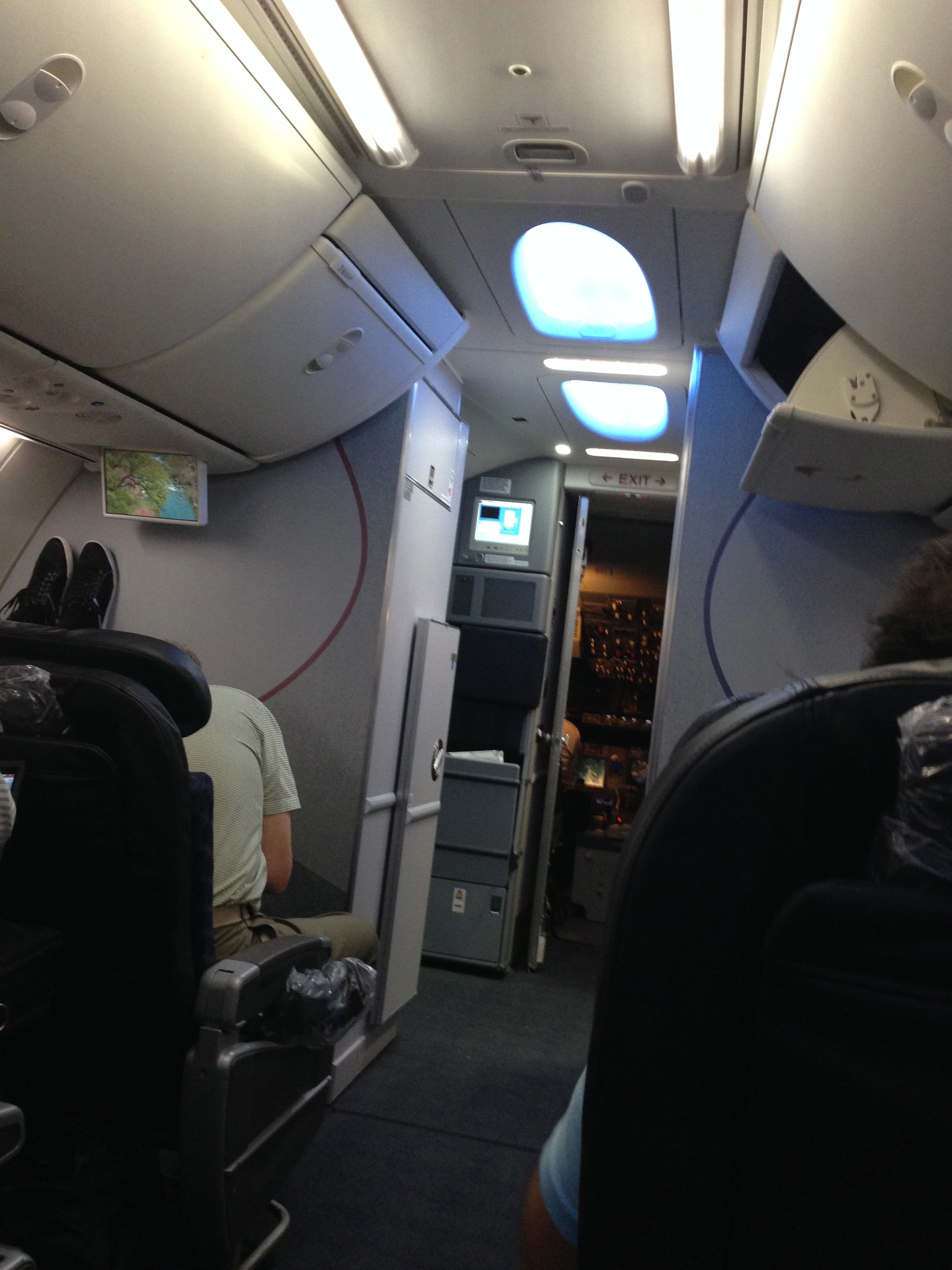 My First Flight On A New AA 737 800 Sky Interior