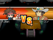 5. VS. Clay Gym Leaders