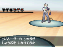 7. Drayden Battle Gym Leaders