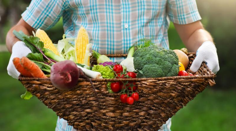 Benefits-of-buying-local-food-resized