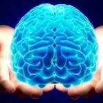 Нервный нейрон