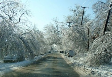 louisville ice storm. Jan 2009