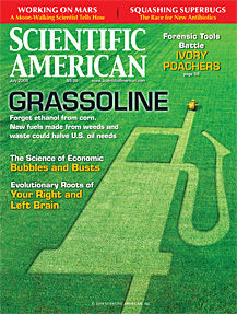 scientific american. grassoline