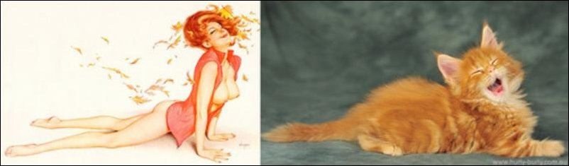 cats-pinup-girls-032
