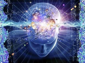quantum computer brain
