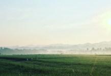 Kawasan Ponjong yang Asri