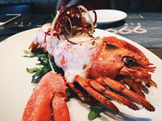 Lobster Gratin ($29)