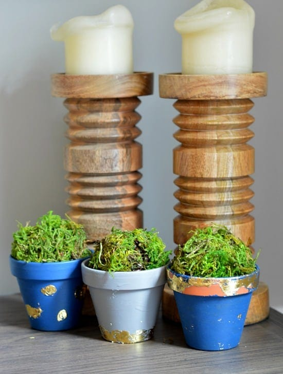 Gold Leaf Plant Pots - Cute for Succulents and Mini Cacti!