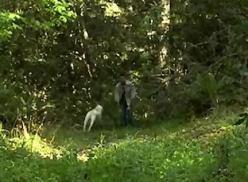 Transa entre namorados depois da trilha.