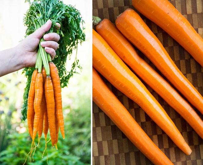 Garlicky Marinated Carrots