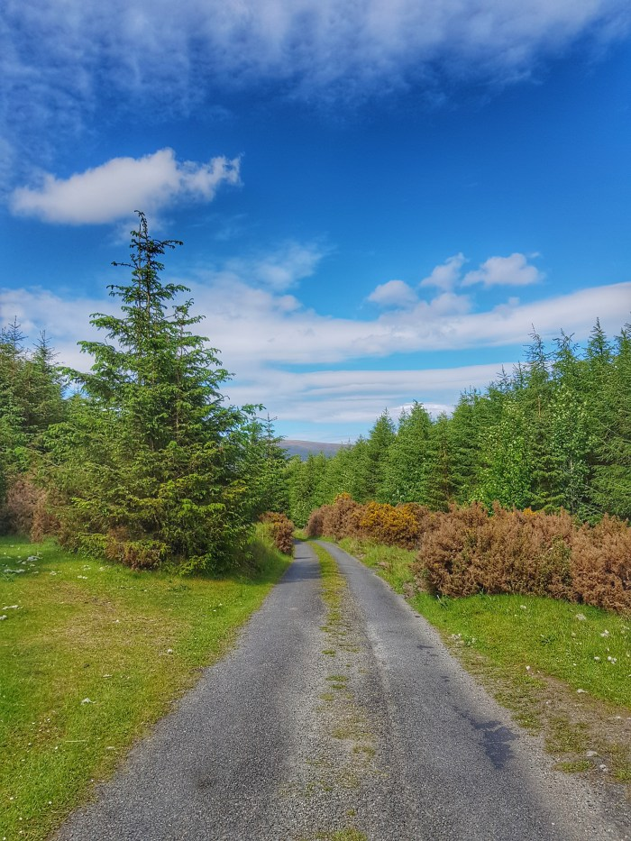 The Gap Road, County Wicklow Photo by Freda Hughes