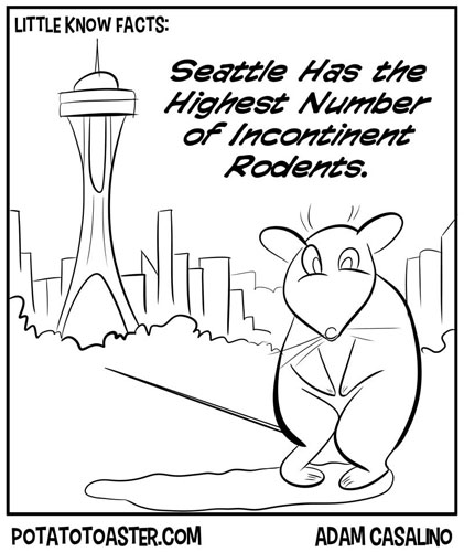 Little Known Facts about Seattle