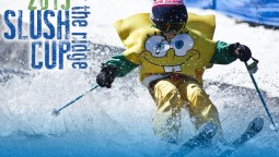 featured-2015-slush-cup