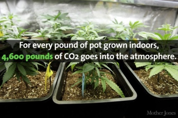 Pot CO2 copy