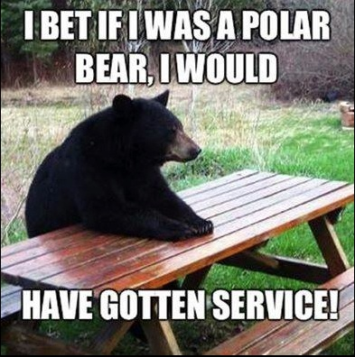 Polar Bear Service copy