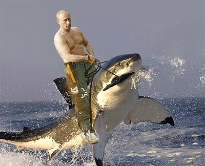 Putin Sharknado copy