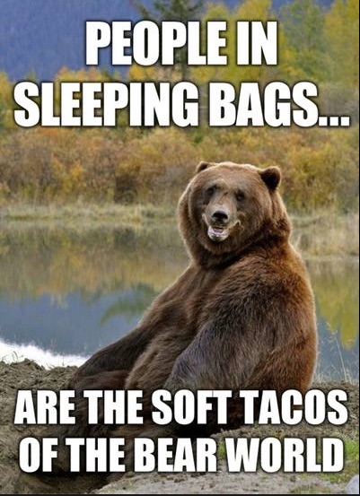 Bear Soft Tacos copy