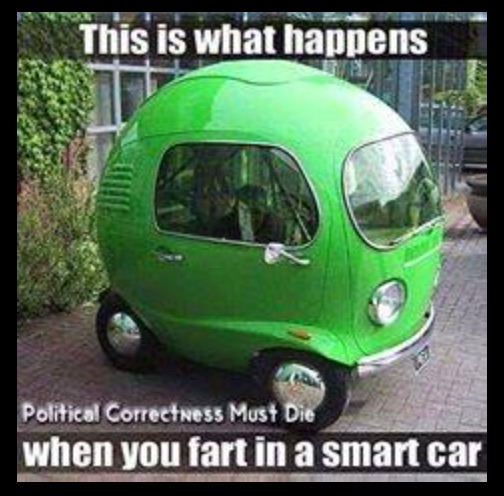 Smart Car Fart copy