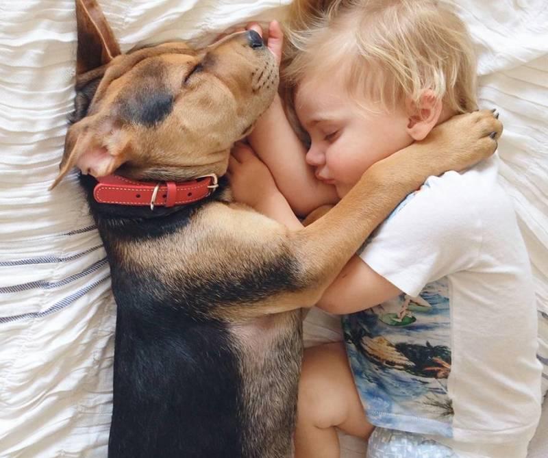 Ребенок собака спит
