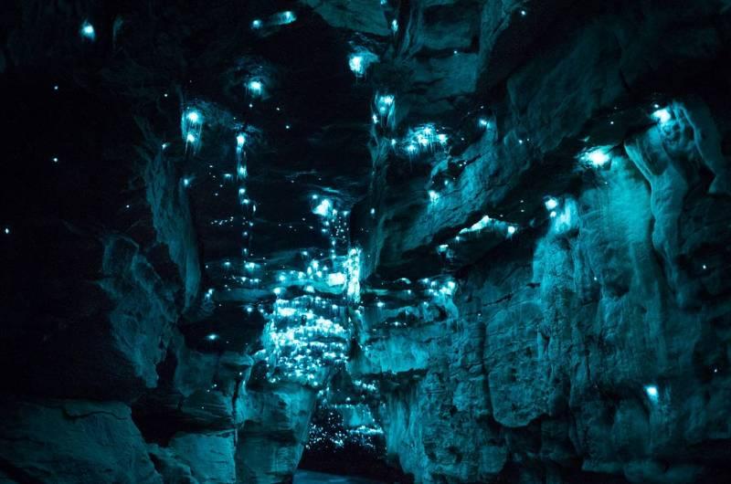 Пещеры Вайтомо.